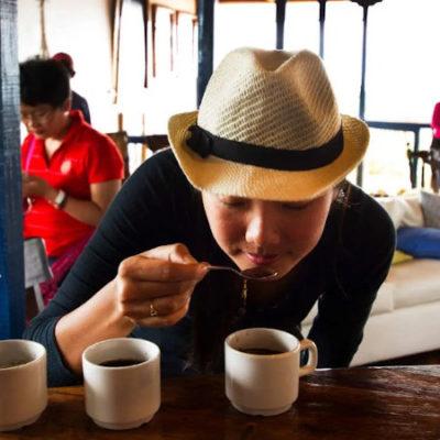 hacienda cafetera eje cafetero